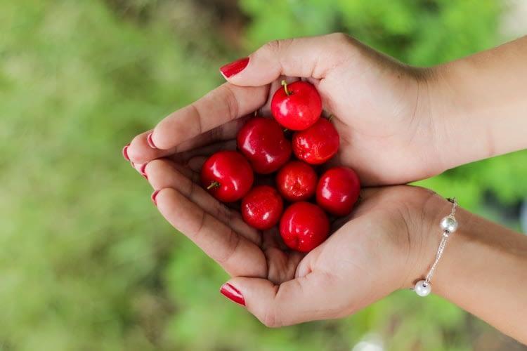 Vitamina C in acerola - fruct cu cel mai mare continut de vitamia C