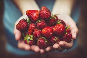 Optimizarea sănătății cu căpșuni